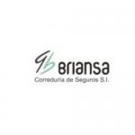 _logo web briansa